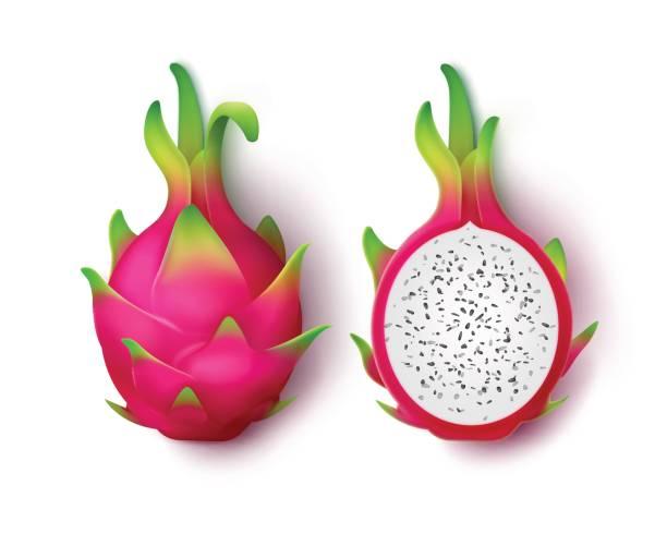 Best Dragon Fruit Illustrations, Royalty.