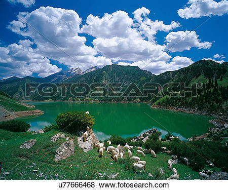 Pictures of the Great Dragon Lake in Kuqa,Sinkiang,China u77666468.
