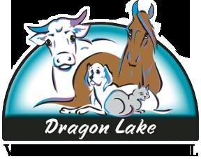 Dragon Lake Veterinary Hospital.