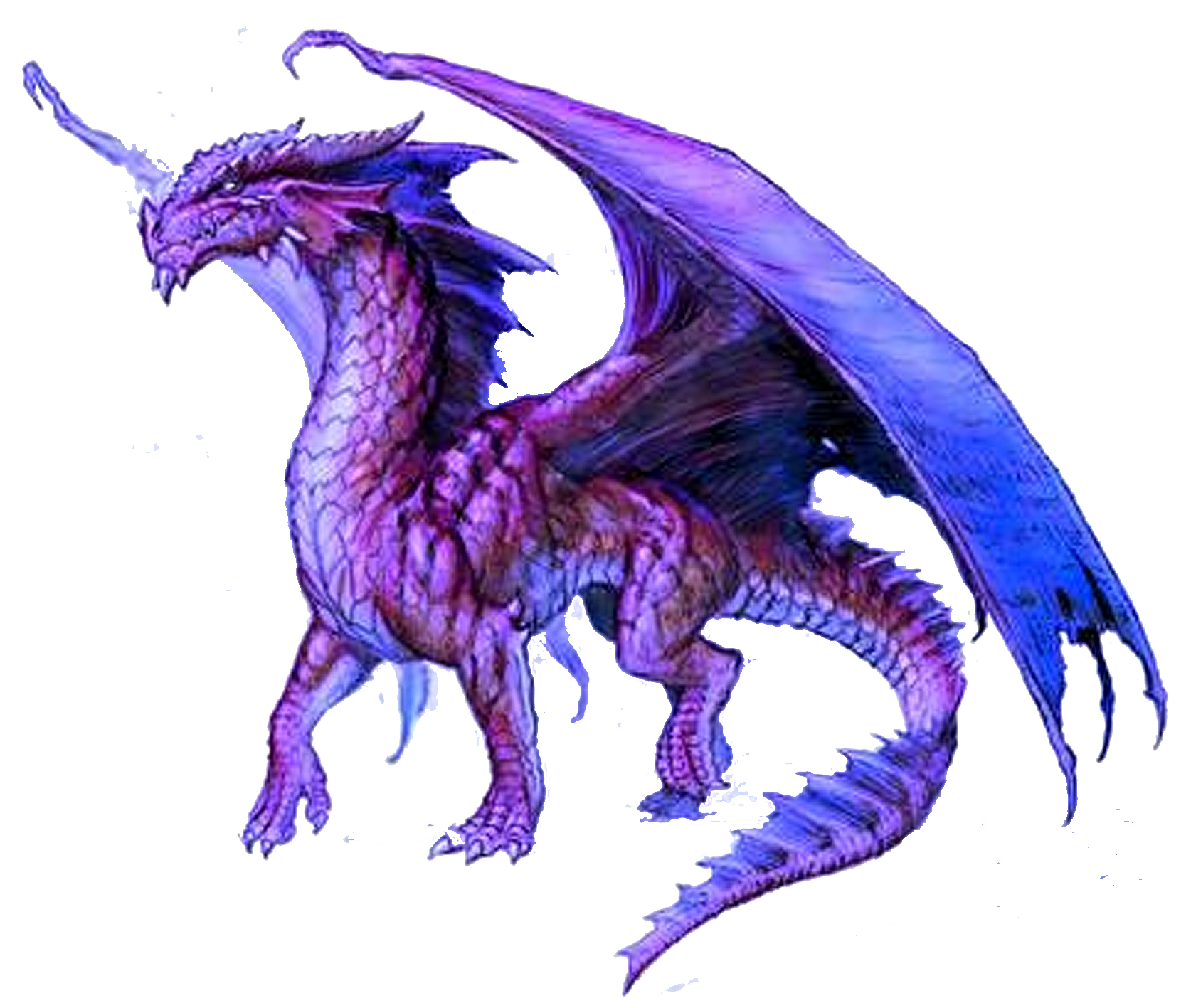 Download Dragon PNG 10.