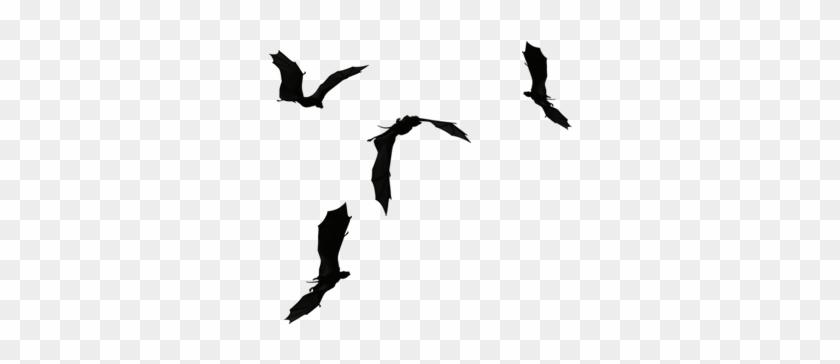 Flying Away Birds Silhouette Download.