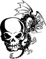 Skull and A Dragon stock vectors.
