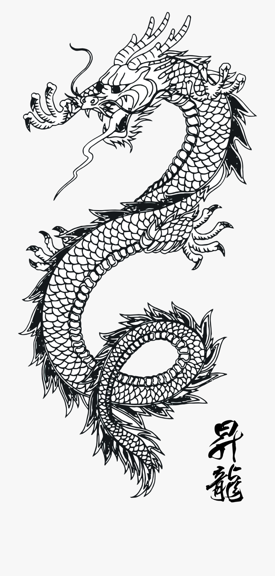 Dragon Tattoos Png Clipart.