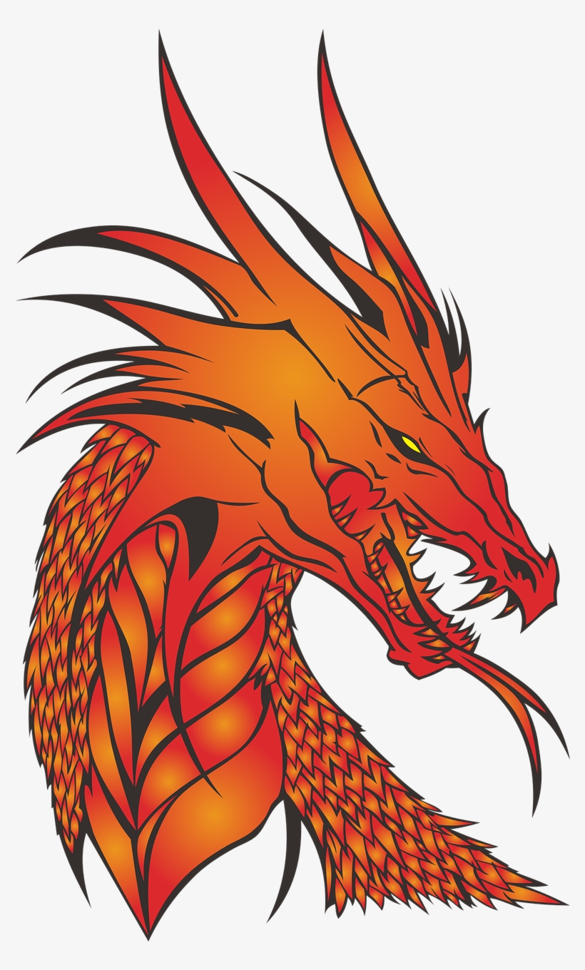 Dragon,no Background,the Head Of.