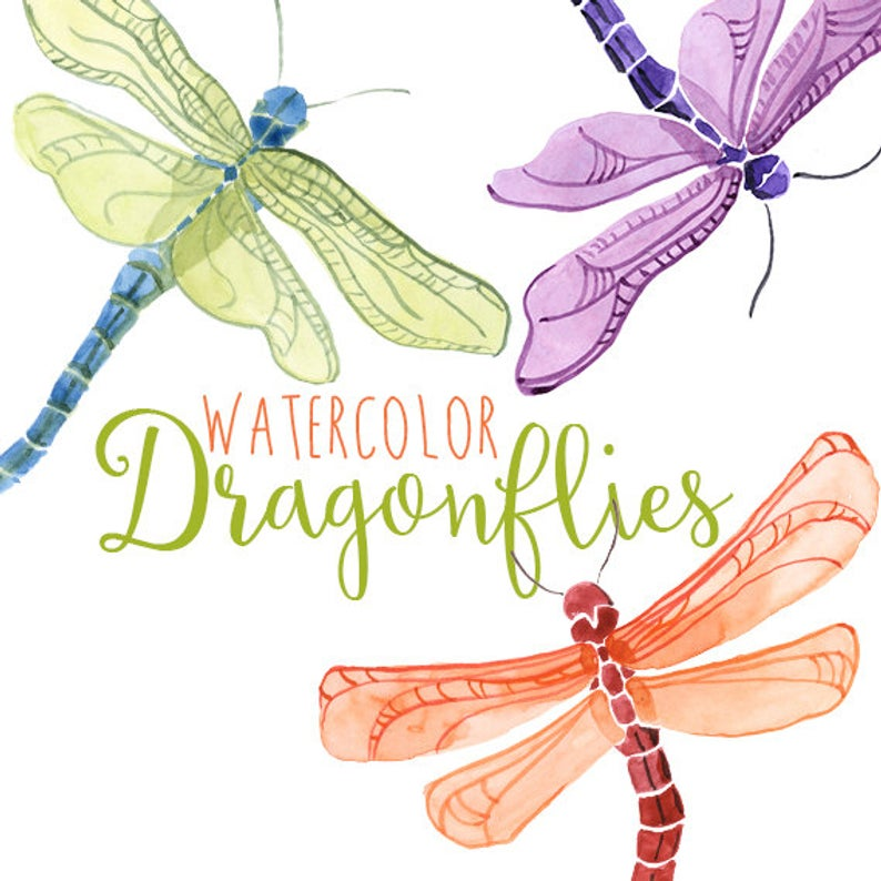 Watercolor dragonflies, Dragonfly Clip Art, Spring Insect Clipart,  Dragonflies Clipart, Dragon Fly Illustration, Summer Clipart Illustration.