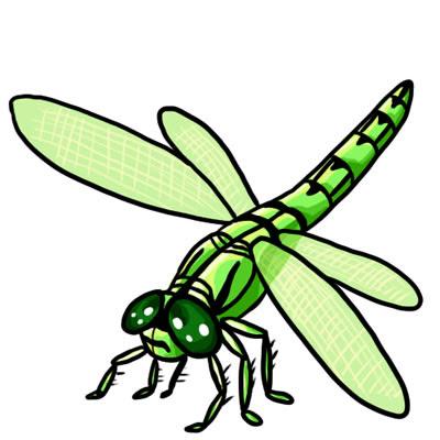 Cartoon Dragonfly Clipart Cake.