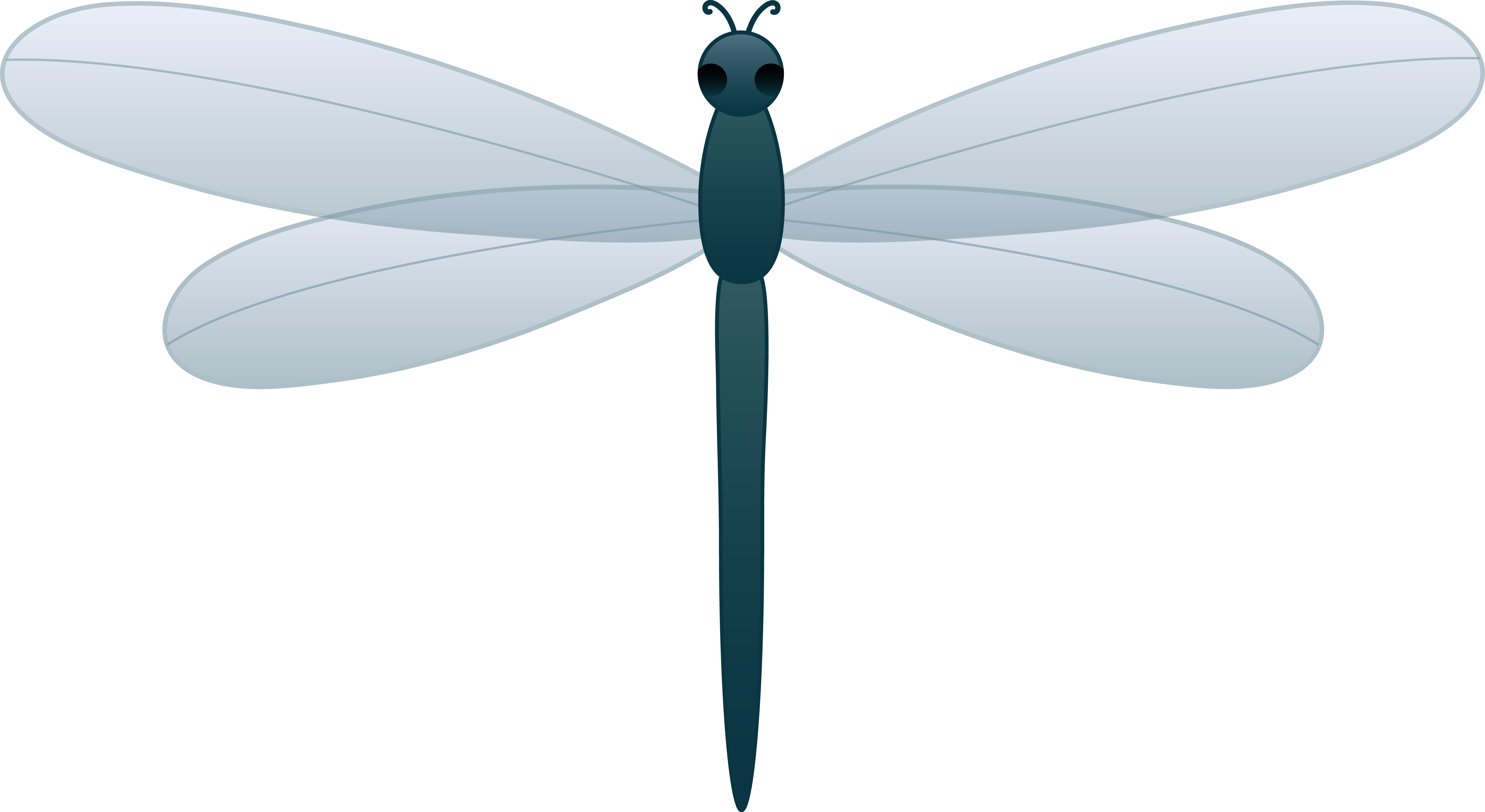 Dragonfly Clipart Free Download Clipart Free Clipart Image.