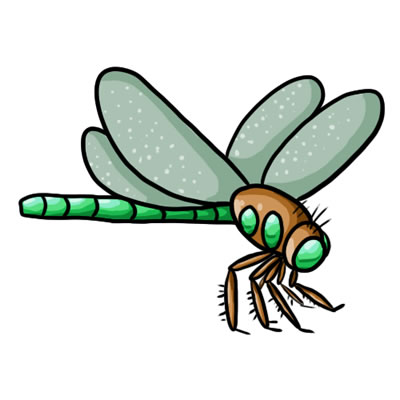 Dragonfly clipart free download free clipart images 4.