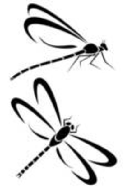 Free Simple Dragonfly Clipart Image.
