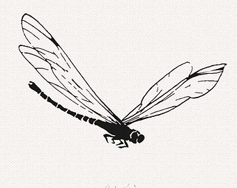 Dragonfly silhouette clip art.