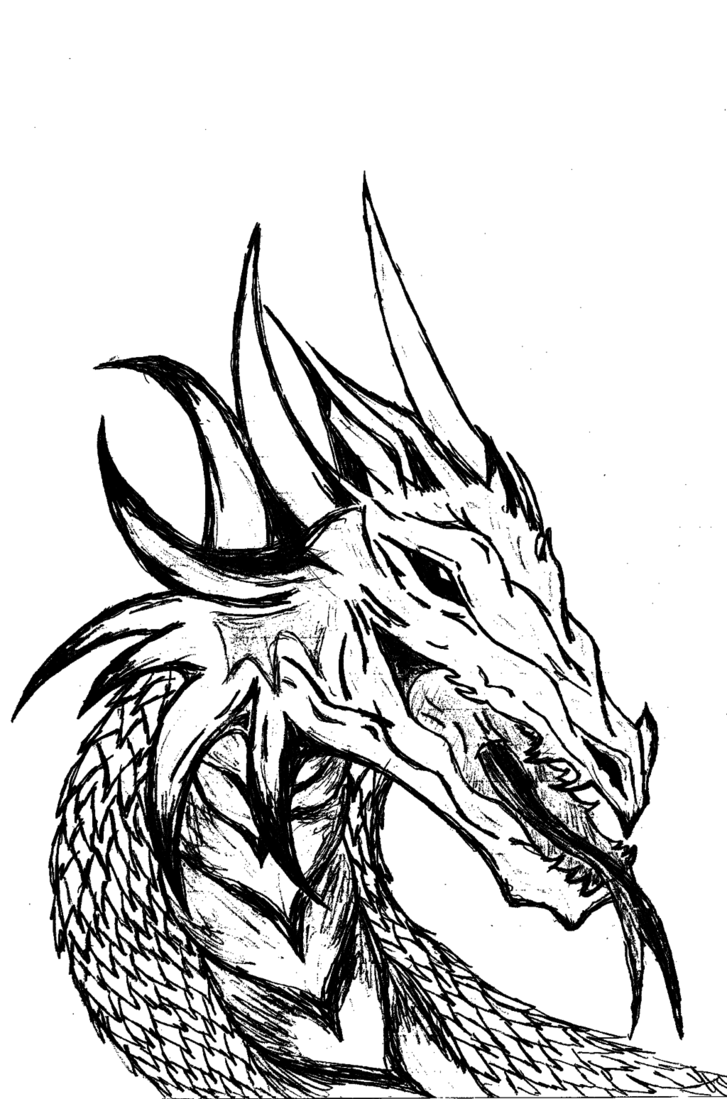 Free Dragon Black And White, Download Free Clip Art, Free.