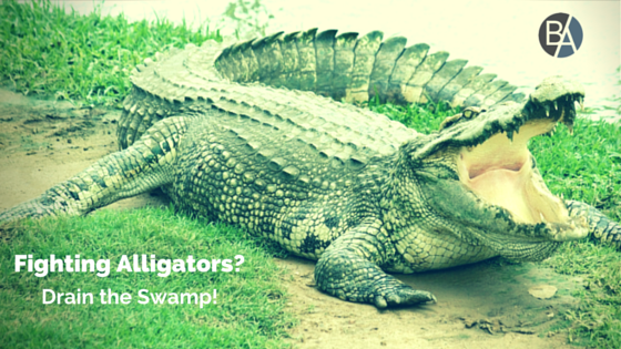 If You're Tired of Fighting Alligators, Drain the Swamp!.