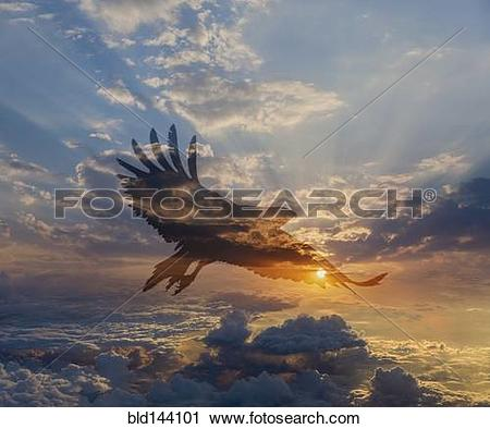 Stock Photography of Silhouette of eagle flying in dramatic.