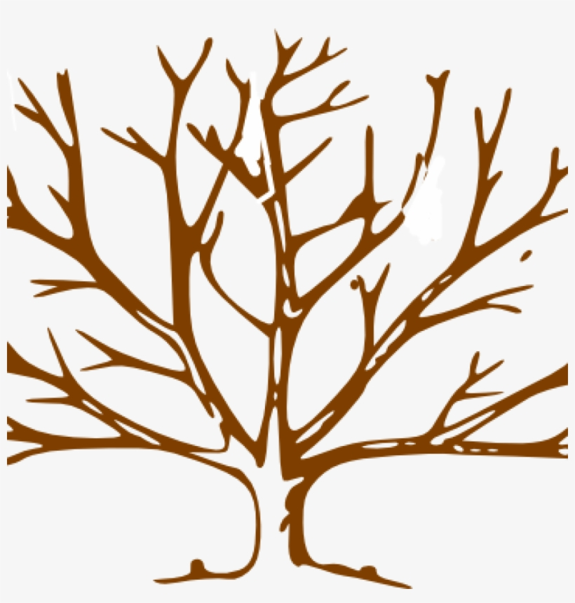 Bare Tree Clipart Brown Clip Art At Clker Vector Online.