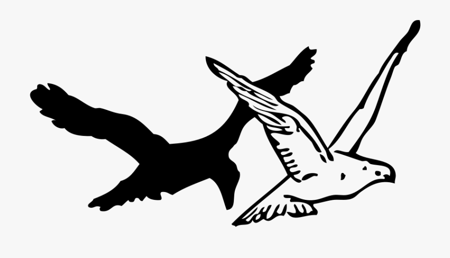 A Flying Pigeon Clipart, Vector Clip Art Online, Royalty.