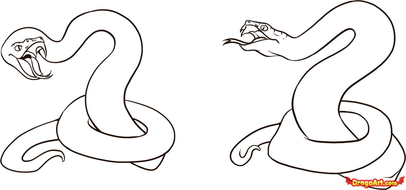 How to Draw a Viper, Step by Step, Snakes, Animals, FREE.