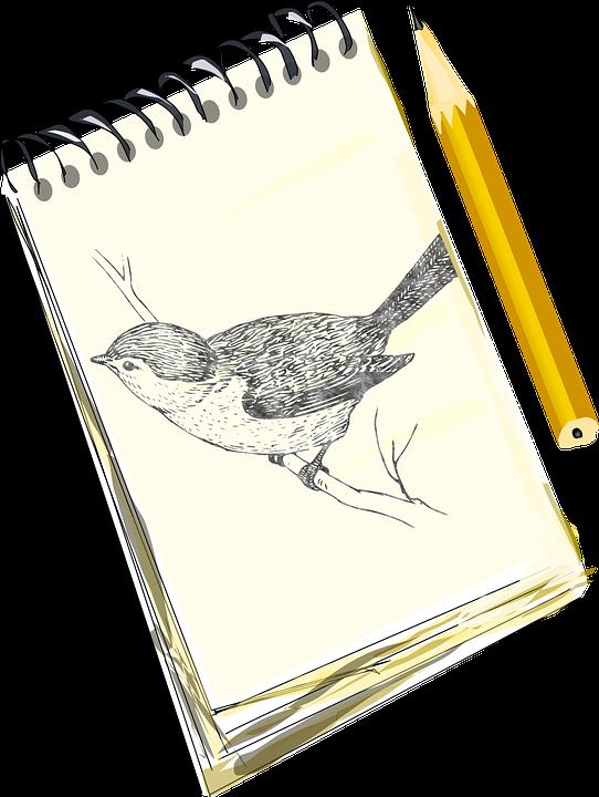 Free vector graphic: Pencil, Sketch, Bird, Pad, Draw.