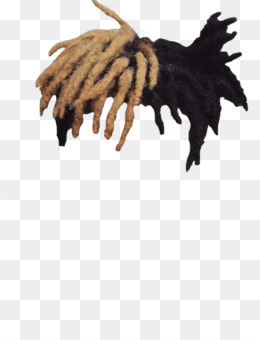Dreadlocks PNG.