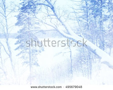 Falling Snow Flakes Tree Branches Ice Stock Vector 35269813.