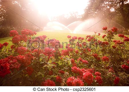 Stock Photography of Enchanted scene with roses.