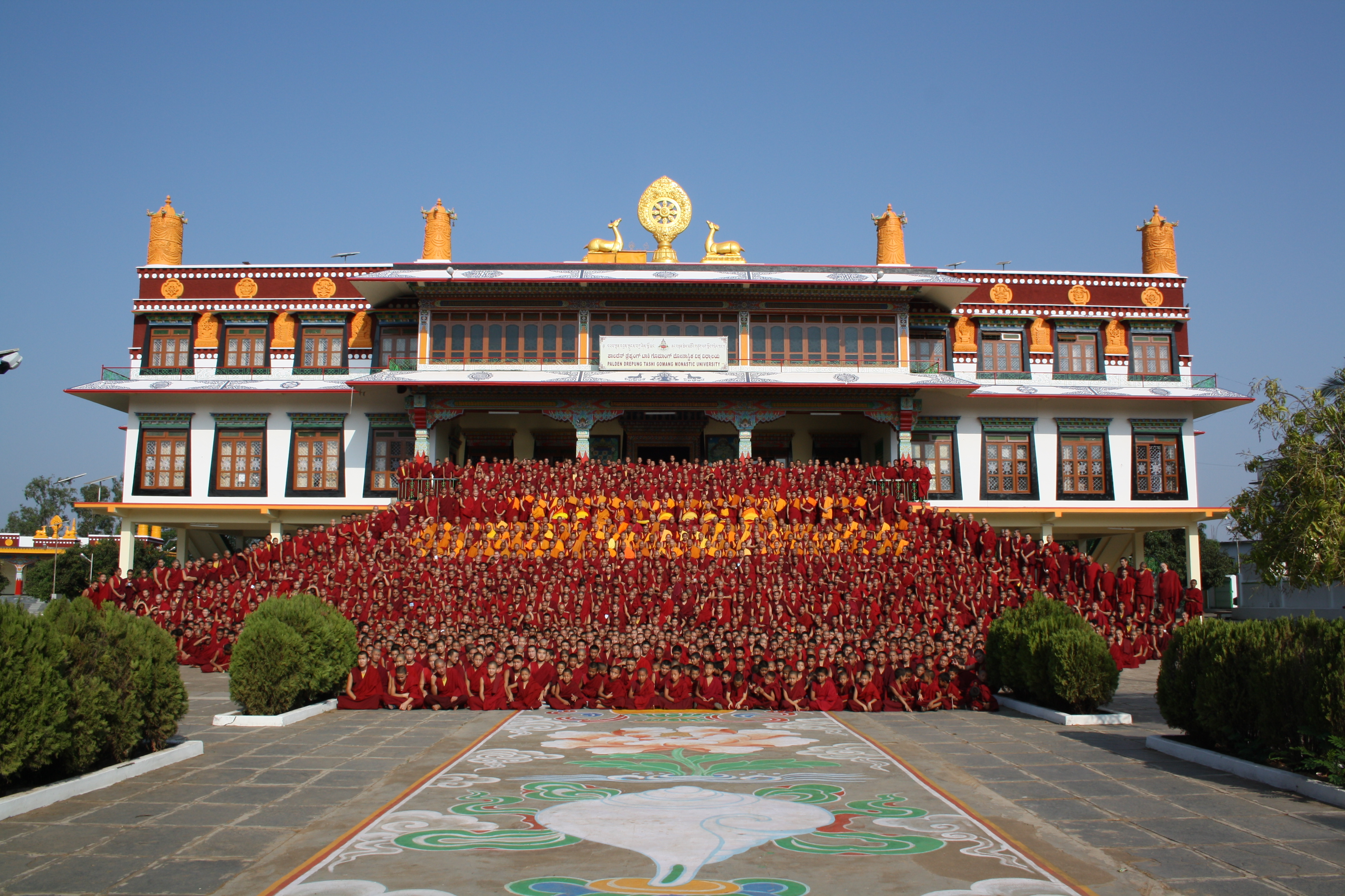 Support Drepung Gomang Monastery.