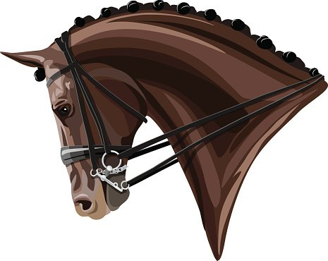 Brown Dressage Horse head Clipart Image.