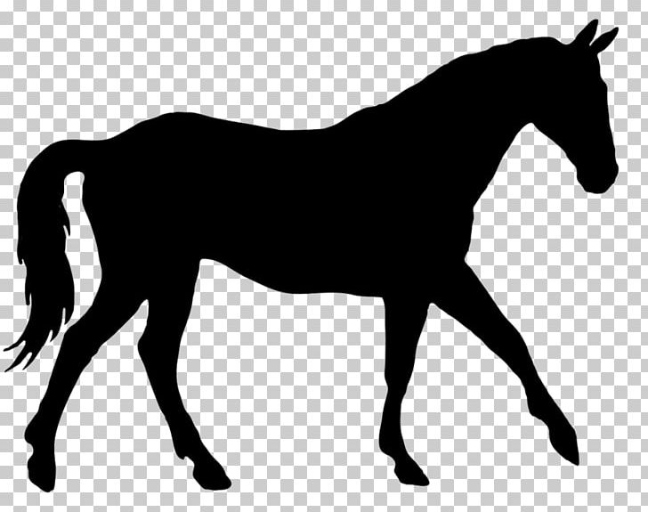 Horse Silhouette Equestrian Dressage PNG, Clipart, Animals, Black.
