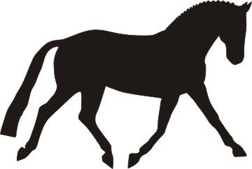 trotting dressage horse.
