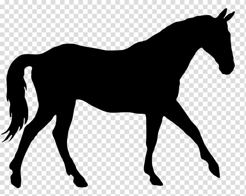 American Quarter Horse Horse & Hound Dressage Silhouette.