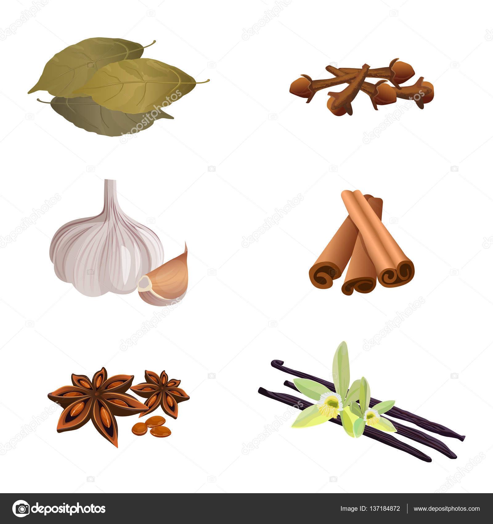 Garlic , cinnamon sticks, dried cloves, bay leaves, anise star.