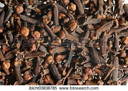 Stock Image of Dried Cloves (Syzygium aromaticum) iblcht03838785.