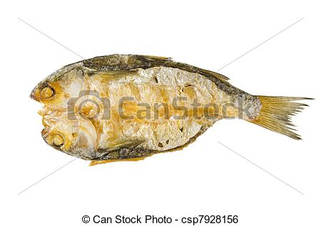 Stock Image of Dried Fish.