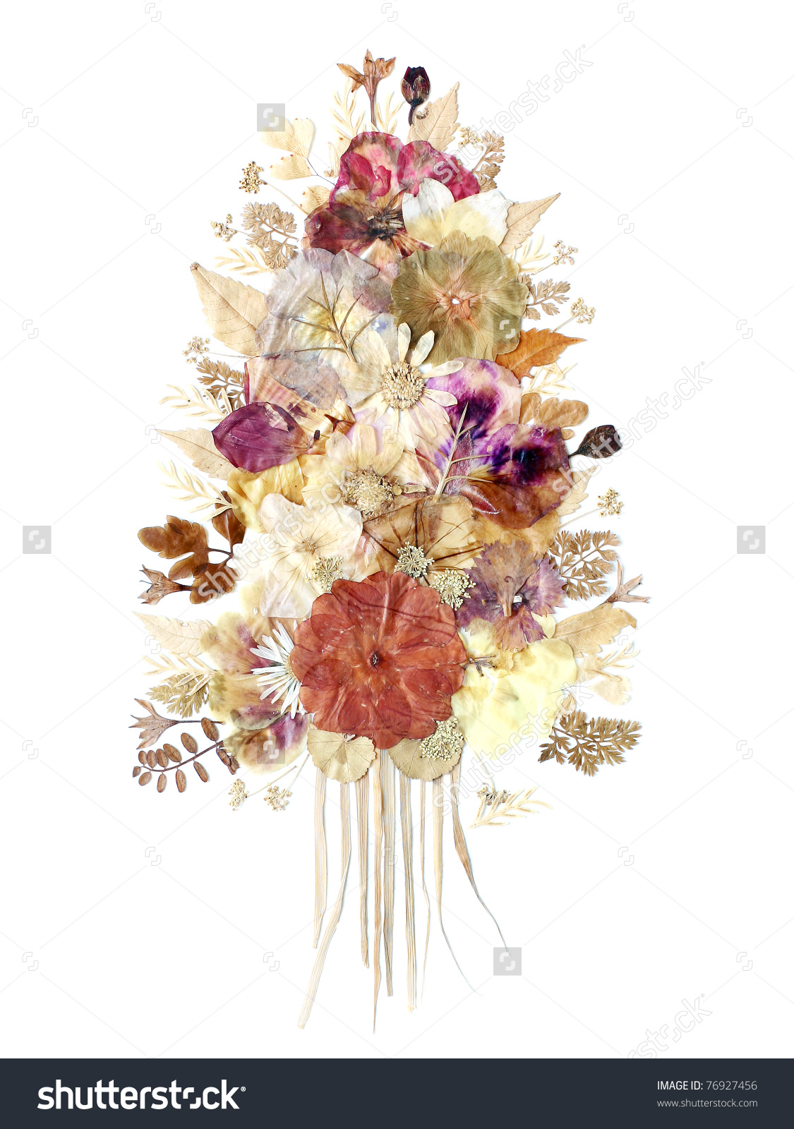 dried flower clipart 20 free cliparts