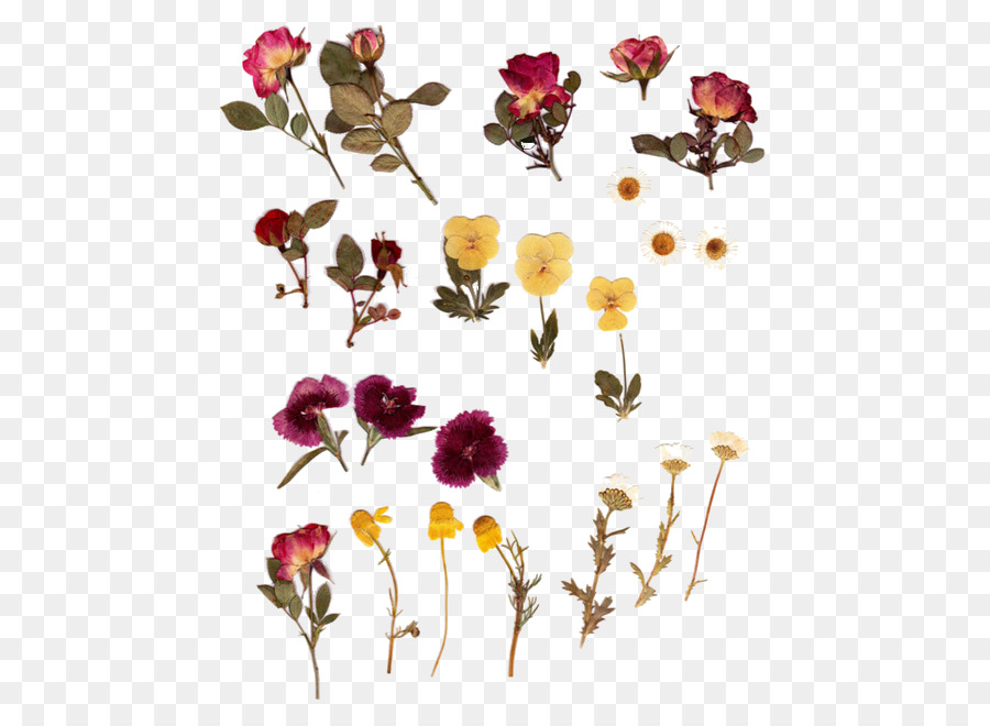 Wedding Watercolor Flowers png download.