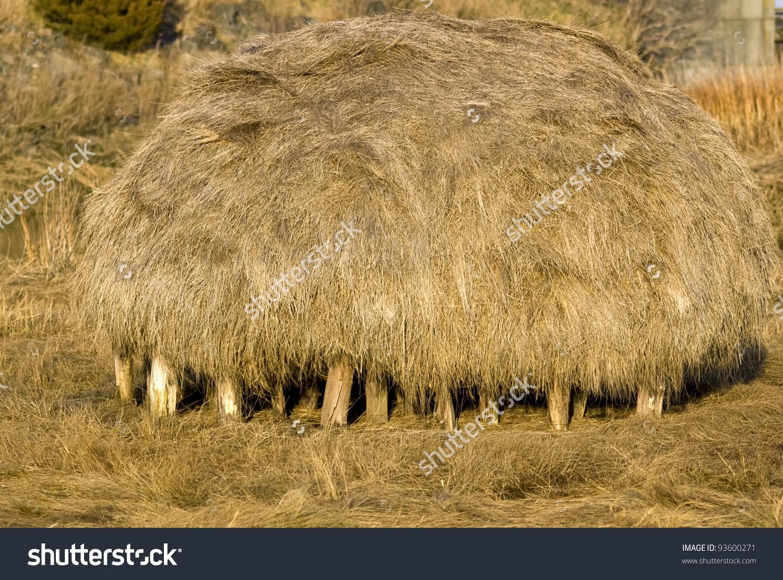 Salt Marsh Hay Bale Stock Photo 93600271 : Shutterstock.