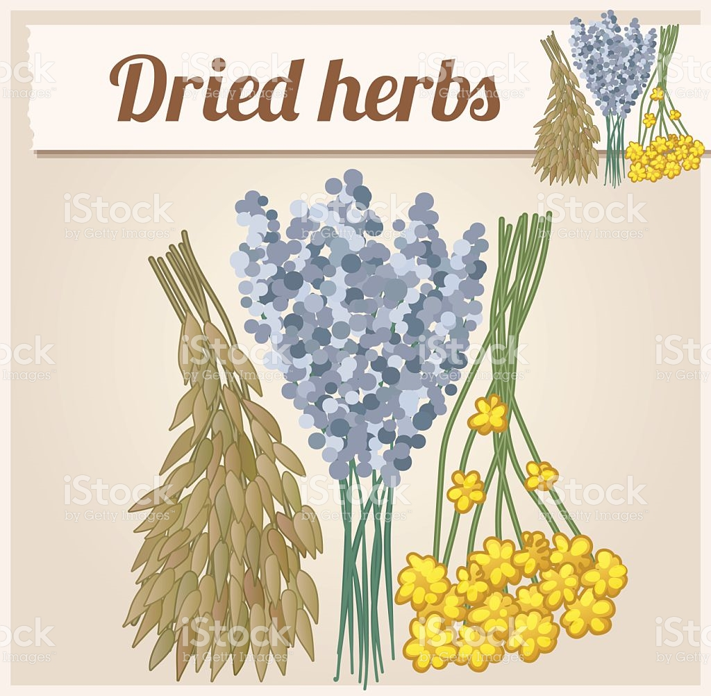 Dried Herbs 2 Detailed Vector Icon stock vector art 495663128.