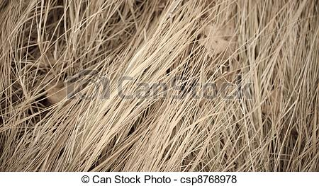 Dry grass Clip Art and Stock Illustrations. 1,491 Dry grass EPS.