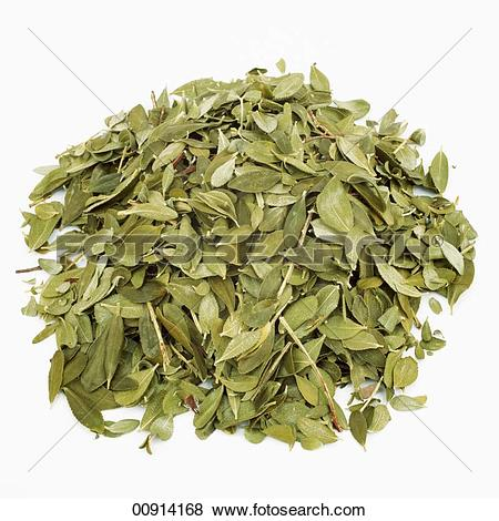 Pictures of Dried leaves from the Buchu plant (Buccu, Barosma.