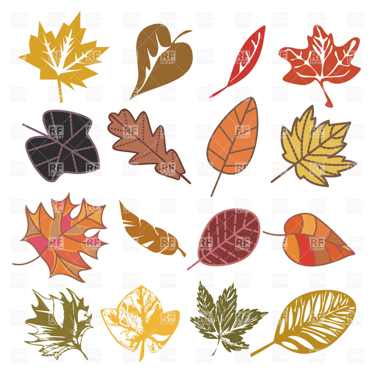 Dry autumn leaves isolated on white Vector Image #20370.