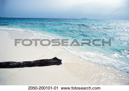 Stock Photography of Colombia, Cayo Bolivar, Dried log on sunny.