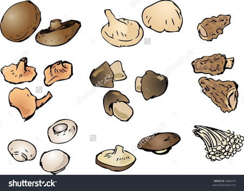 Handdrawn Illustration Clipart Mushrooms Portobello Button Stock.