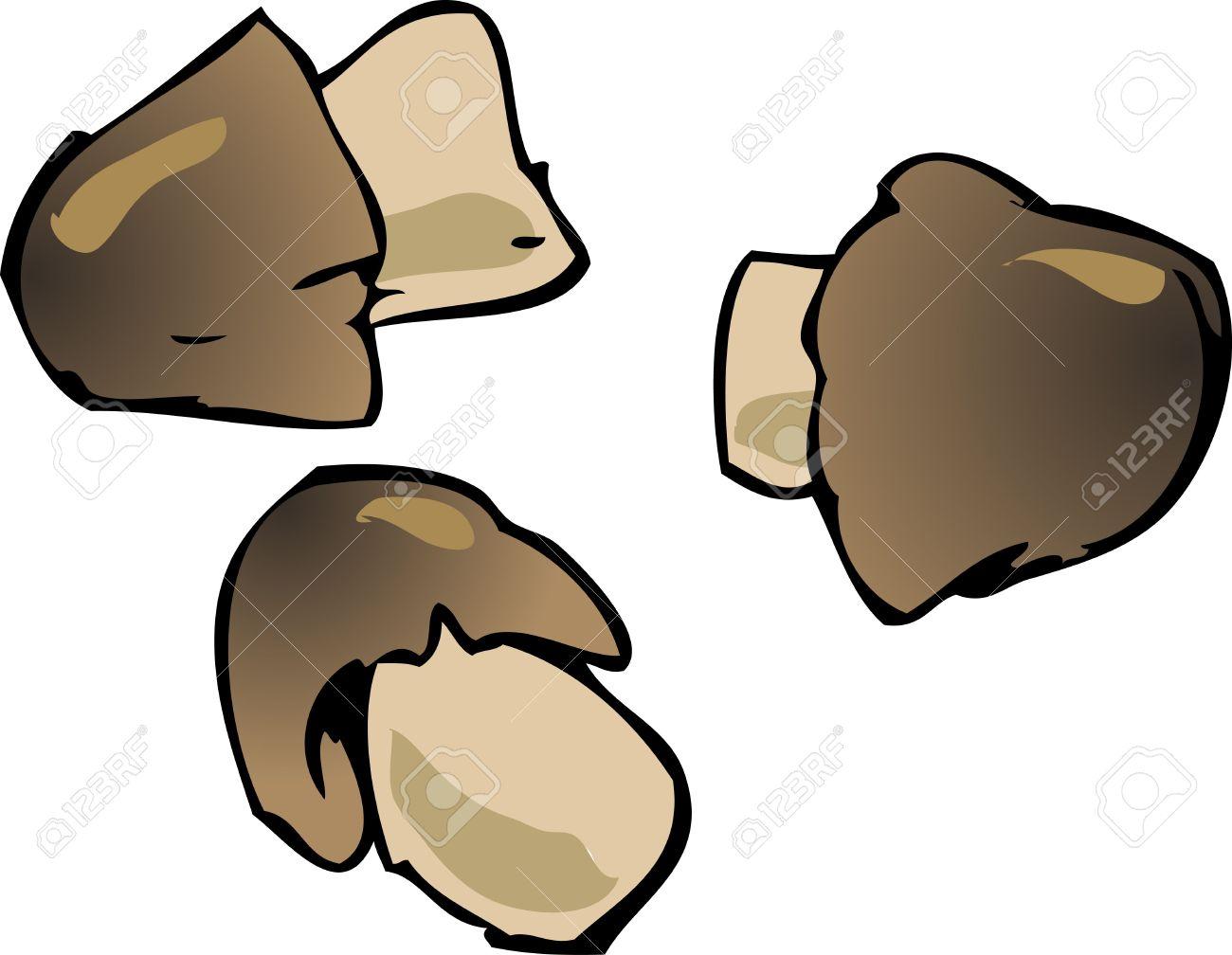 Button Mushroom Illustration Edible Fungus Hand.