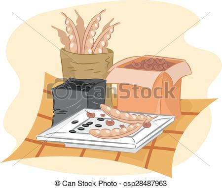 Clip Art Vector of Dried Seeds.