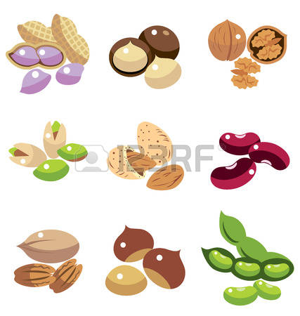 1,577 Dried Fruit Stock Vector Illustration And Royalty Free Dried.