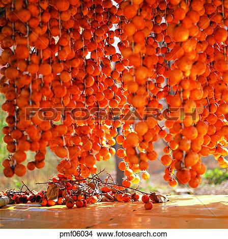 Stock Photo of persimmon, dry, dry process, dried persimmons.
