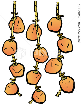 dried persimmons, hanging persimmon, vector.