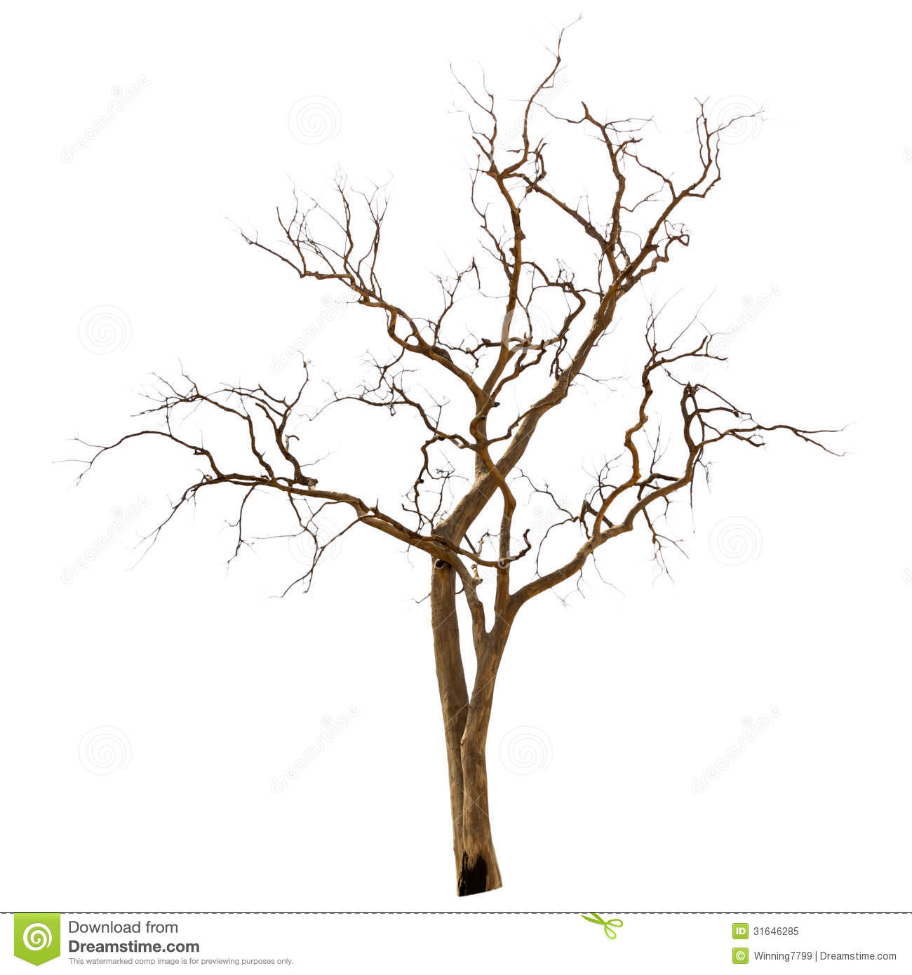 Dried trees clipart 20 free Cliparts | Download images on ...
