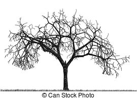 Dry tree Clip Art and Stock Illustrations. 7,637 Dry tree EPS.