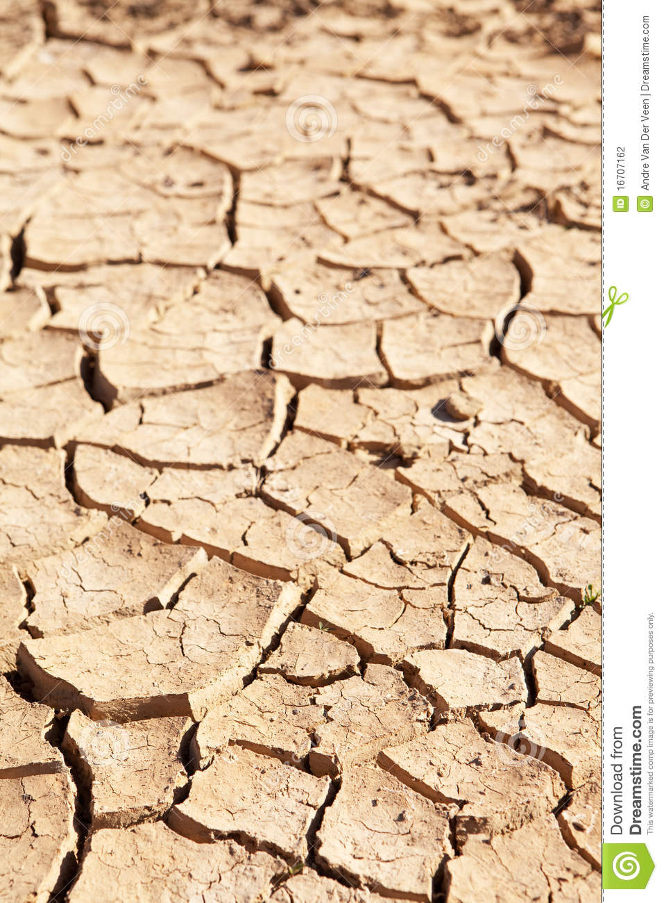 Dry Cracked Mud In Dried Up Waterhole Stock Photography.