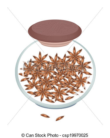 Vector Illustration of Jar of Dried Star Anise on White Background.